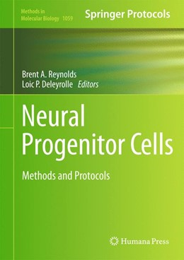 Abbildung von Reynolds / Deleyrolle | Neural Progenitor Cells | 2013 | Methods and Protocols | 1059