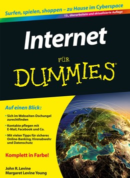 Abbildung von Levine / Young   Internet für Dummies   2013