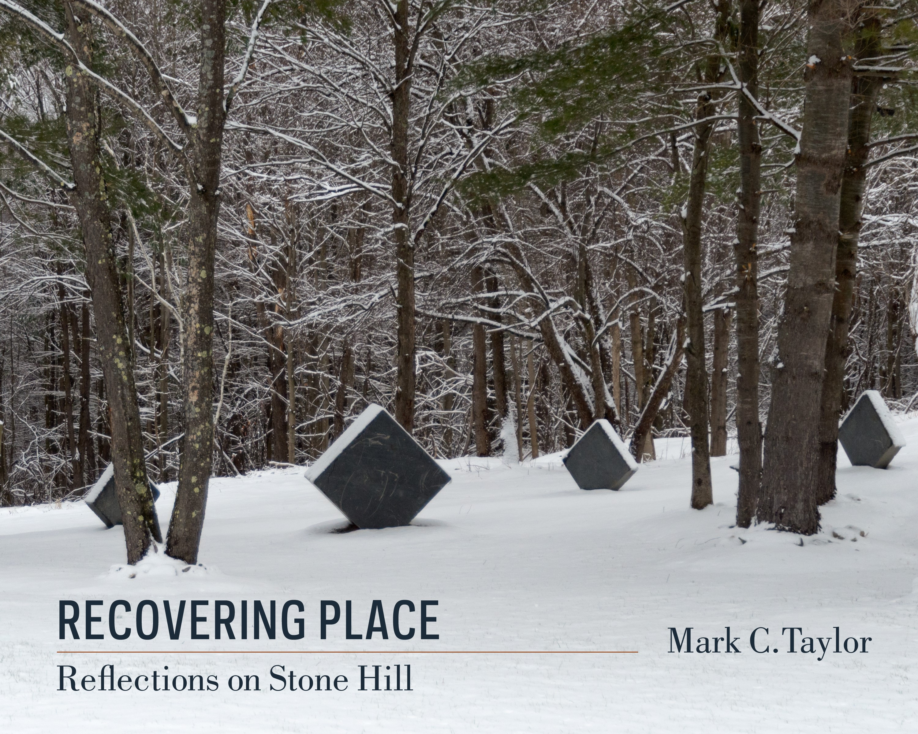 Abbildung von Taylor | Recovering Place | 2014