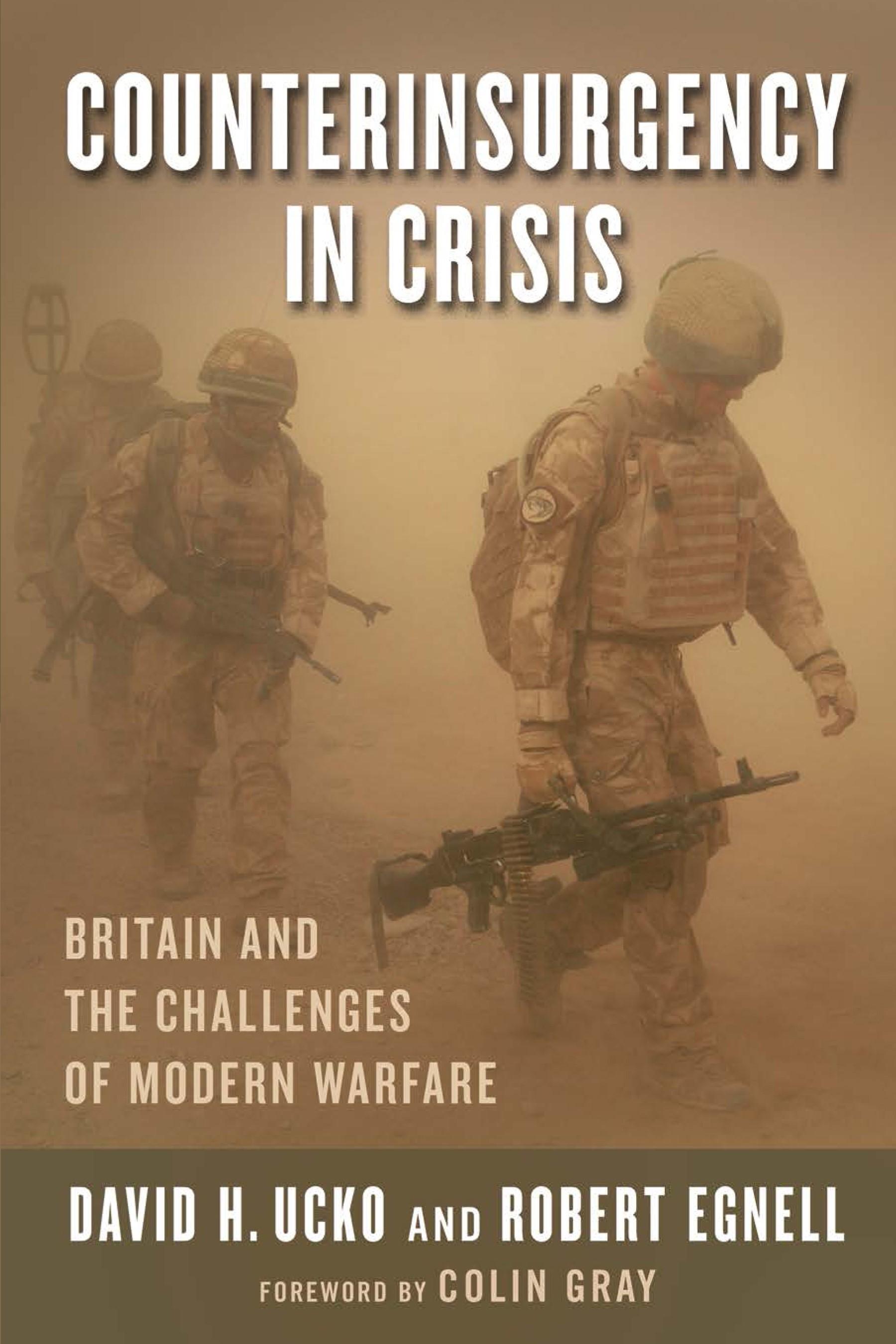 Abbildung von Counterinsurgency in Crisis | 2013