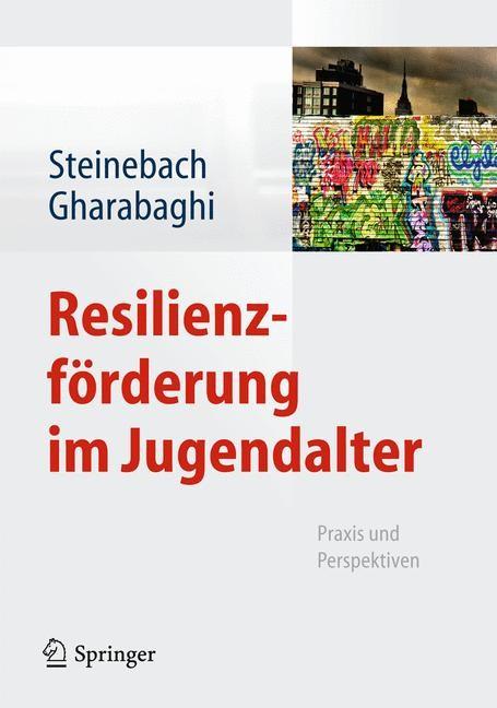 Abbildung von Steinebach / Gharabaghi | Resilienzförderung im Jugendalter | 2013