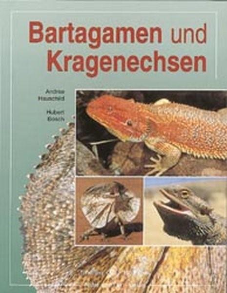 Bartagamen und Kragenechsen | Bosch / Hauschild | 5. A, 2004 | Buch (Cover)
