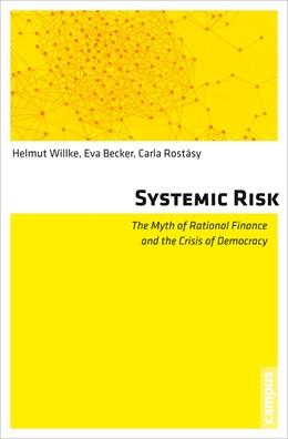 Abbildung von Willke / Becker / Rostásy | Systemic Risk | 2013 | The Myth of Rational Finance a...