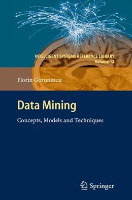 Abbildung von Gorunescu | Data Mining | 2013 | Concepts, Models and Technique... | 12