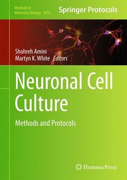 Abbildung von Amini / White | Neuronal Cell Culture | 2013 | Methods and Protocols | 1078