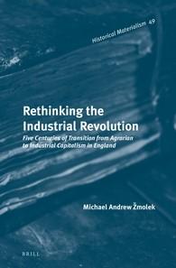 Abbildung von Žmolek | Rethinking the Industrial Revolution | 2013