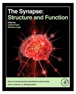 Abbildung von Pickel / Segal | The Synapse | 2014 | Structure and Function