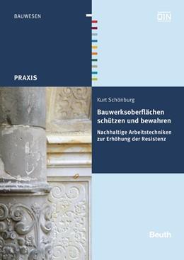 Abbildung von Schönburg | Bauwerksoberflächen schützen und bewahren | 2014 | Nachhaltige Arbeitstechniken z...