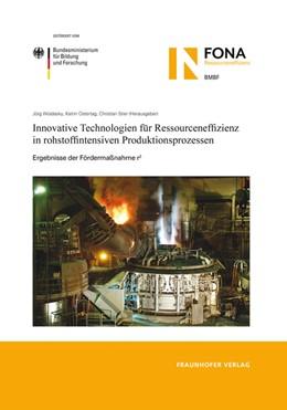 Abbildung von / Woidasky / Ostertag / Stier | Innovative Technologien für Ressourceneffizienz in rohstoffintensiven Produktionsprozessen | 2013 | Ergebnisse des BMBF-Förderschw...