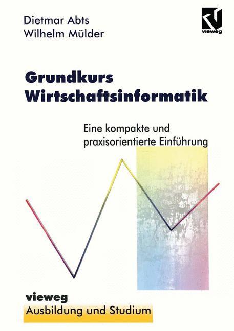 Grundkurs Wirtschaftsinformatik   Abts, 1996   Buch (Cover)