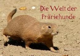 Abbildung von kattobello | Die Welt der Präriehunde (Posterbuch DIN A4 quer) | 2013 | Heimliche Bewohner Nordamerika...