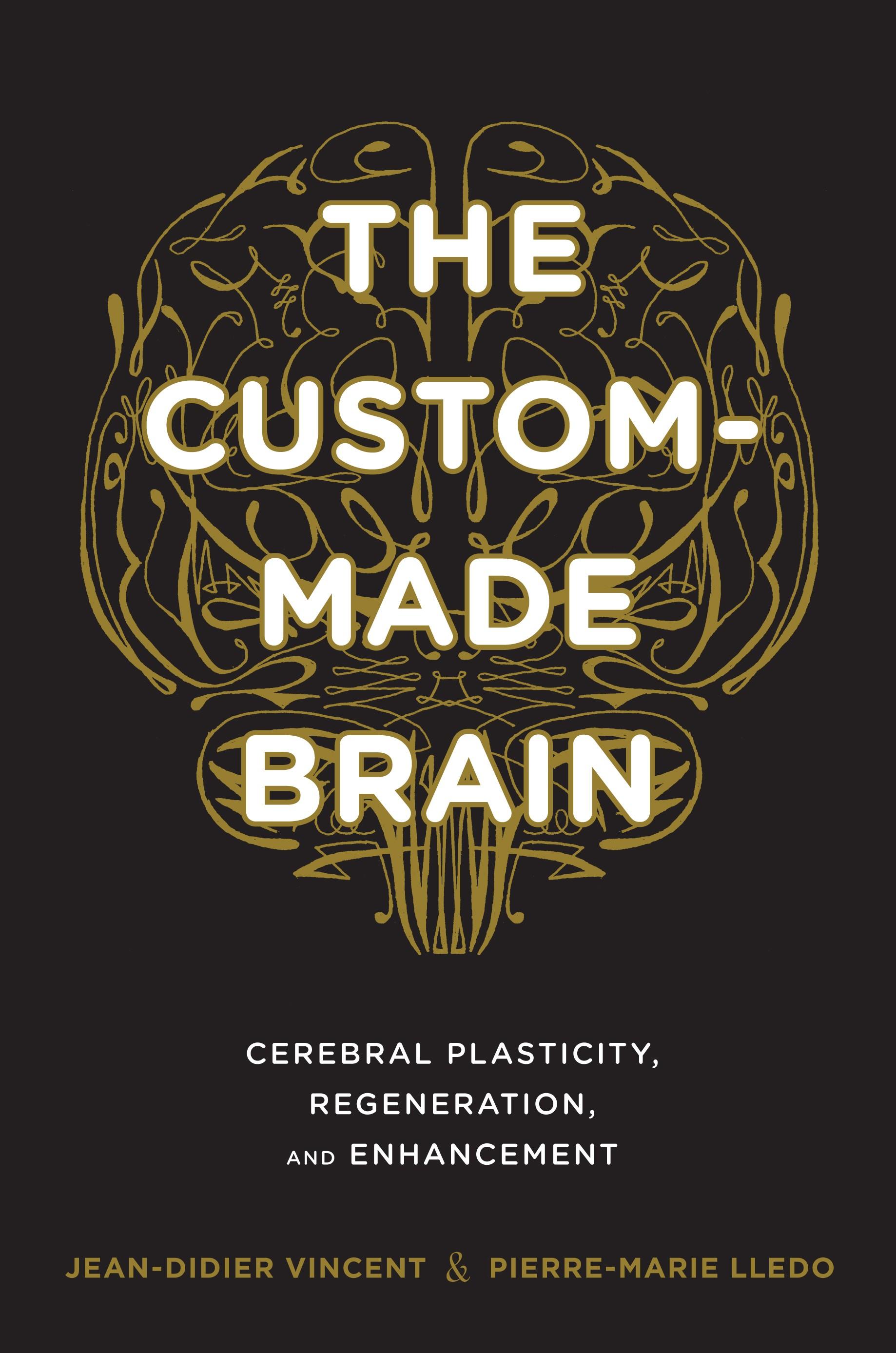 Abbildung von Vincent / Lledo   The Custom-Made Brain   2014