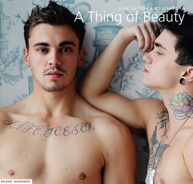 Abbildung von A Thing of Beauty | 2014