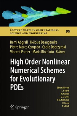 Abbildung von Abgrall / Beaugendre / Congedo / Dobrzynski / Perrier / Ricchiuto | High Order Nonlinear Numerical Schemes for Evolutionary PDEs | 2014 | Proceedings of the European Wo... | 99