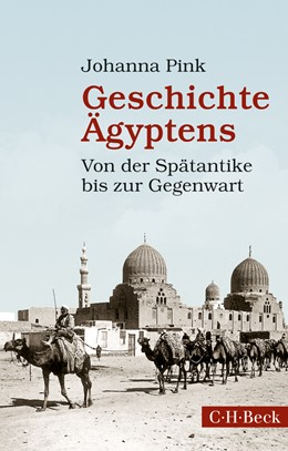 Abbildung von Pink, Johanna | Geschichte Ägyptens | 1. Auflage | 2014 | 6163 | beck-shop.de
