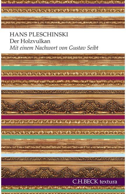 Cover: Hans Pleschinski, Der Holzvulkan