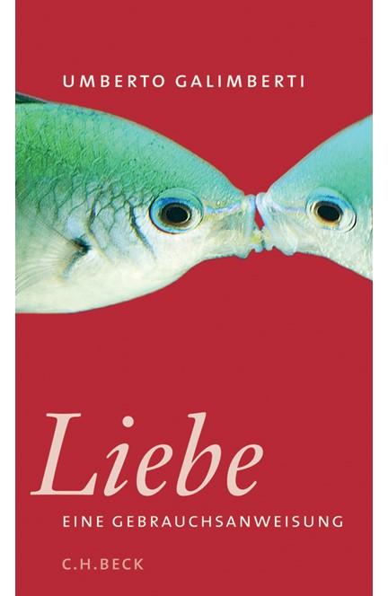 Cover: Annette Kopetzki|Umberto Galimberti, Liebe. Eine Gebrauchsanweisung