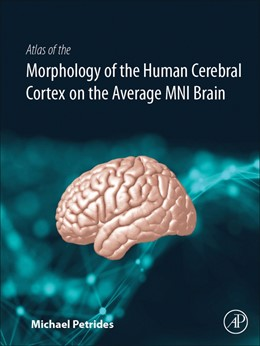 Abbildung von Petrides | Atlas of the Morphology and Cytoarchitecture of the Human Cerebral Cortex on the Average MNI Brain | 2019