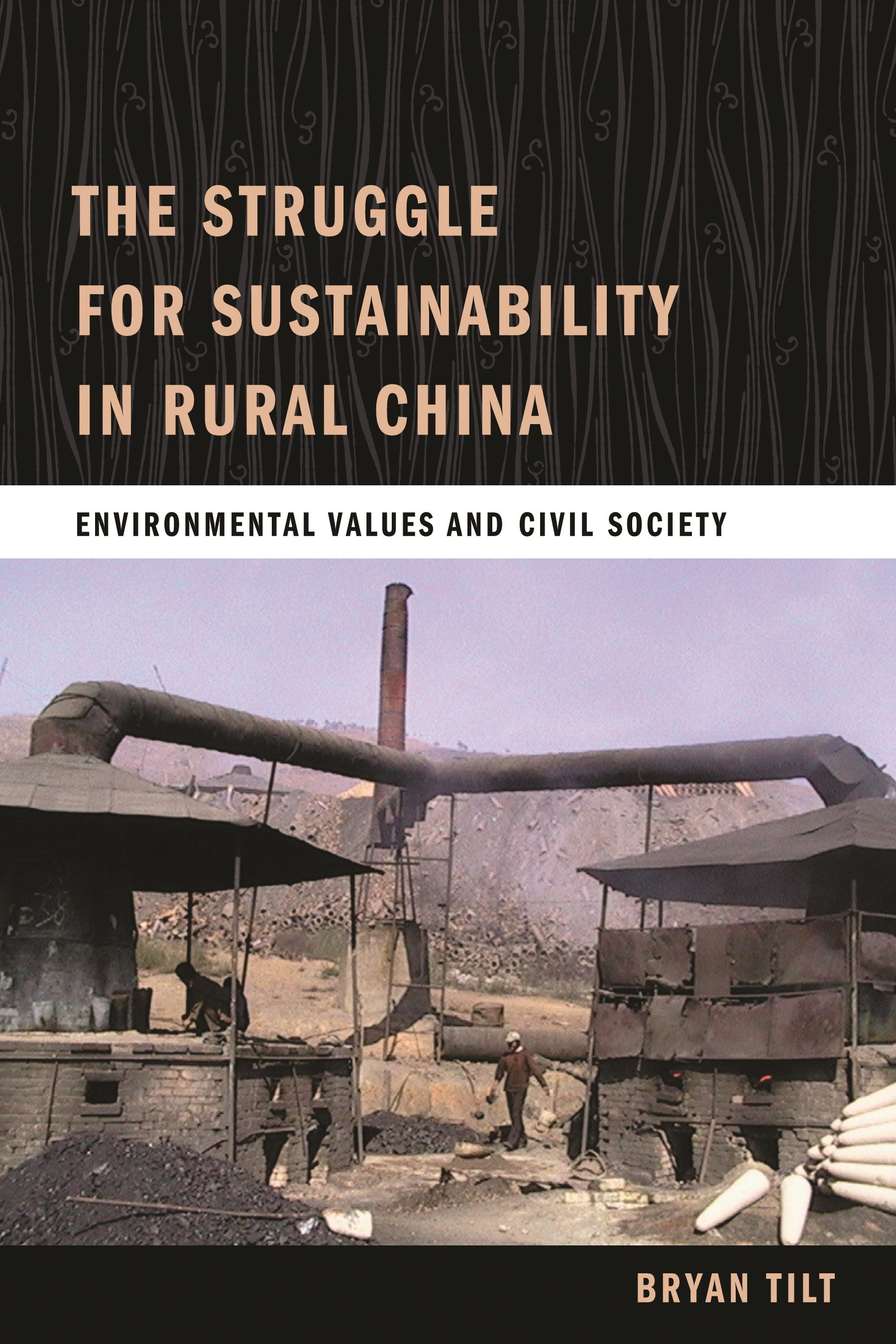 Abbildung von Tilt | The Struggle for Sustainability in Rural China | 2009