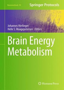 Abbildung von Hirrlinger / Waagepetersen | Brain Energy Metabolism | 2014 | 90