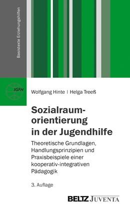 Abbildung von Hinte / Treeß   Sozialraumorientierung in der Jugendhilfe   3., überarbeitete Aufl.   2014   Theoretische Grundlagen, Handl...