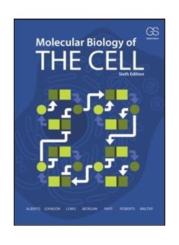 Abbildung von Alberts / Johnson | Molecular Biology of the Cell | 6. Auflage | 2014 | beck-shop.de