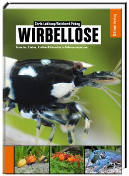 Abbildung von Lukhaup / Pekny | Wirbellose | 1. Auflage | 2014 | beck-shop.de