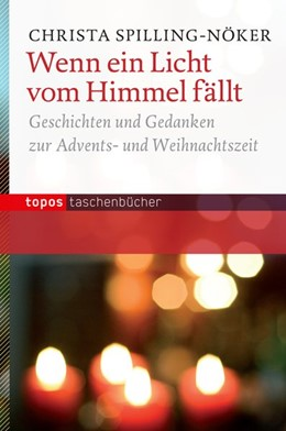 Abbildung von Spilling-Nöker | Wenn ein Licht vom Himmel fällt | 1. Auflage | 2014 | beck-shop.de