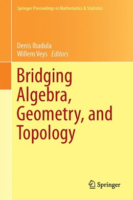 Abbildung von Ibadula / Veys | Bridging Algebra, Geometry, and Topology | 2014