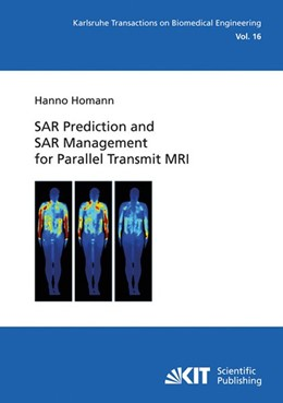 Abbildung von Homann | SAR Prediction and SAR Management for Parallel Transmit MRI | 2014