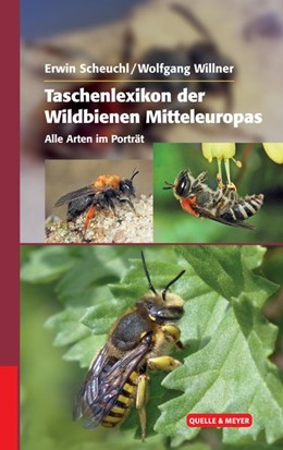 Abbildung von Scheuchl / Willner | Taschenlexikon der Wildbienen Mitteleuropas | 2016