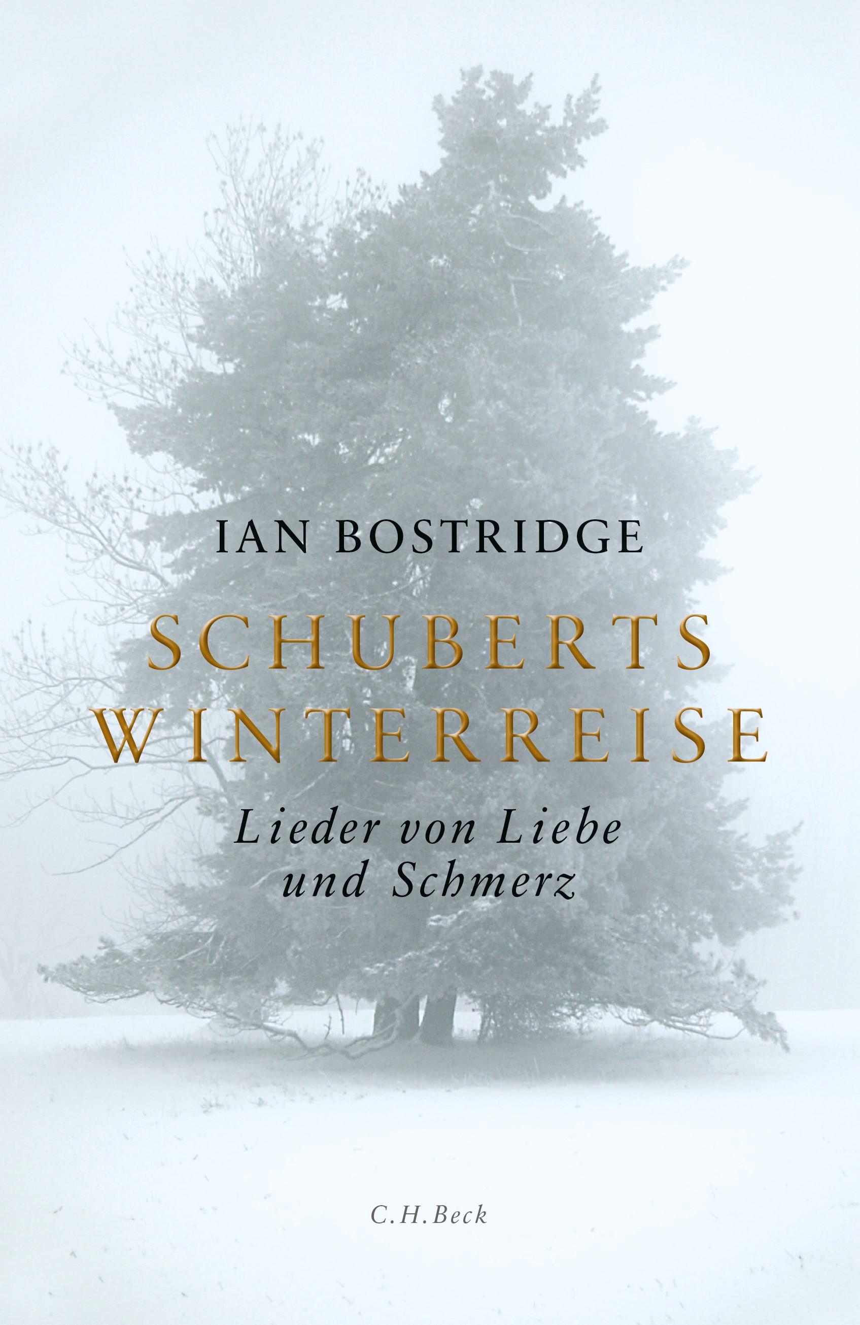 Schuberts Winterreise | Bostridge, Ian | 4. Auflage | Buch (Cover)