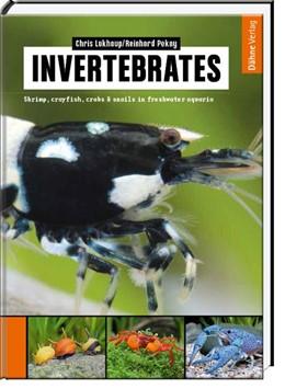 Abbildung von Lukhaup / Pekny   Invertebrates   1. Auflage   2015   beck-shop.de