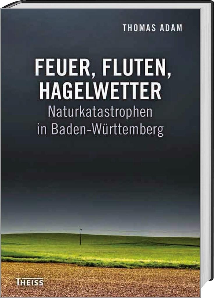 Feuer, Fluten, Hagelwetter | Adam, 2015 | Buch (Cover)