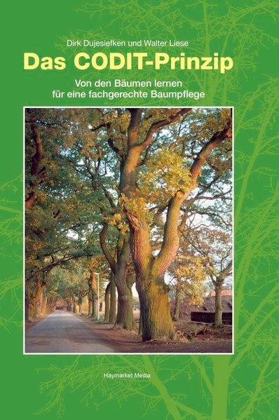 Das CODIT-Prinzip | Dujesiefken / Liese, 2008 | Buch (Cover)