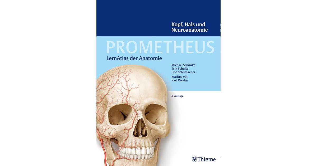 PROMETHEUS Kopf, Hals und Neuroanatomie | Schünke / Schulte ...