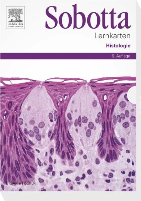 Sobotta Lernkarten Histologie   Bräuer / Scholz   6. Auflage, 2015 (Cover)