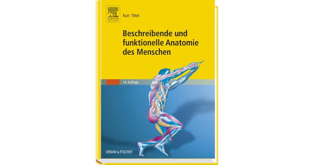 Groß Was Funktionelle Anatomie Bilder - Anatomie Ideen - finotti.info