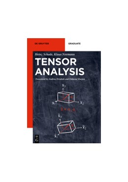 Abbildung von Schade / Neemann | Tensor Analysis | 2018