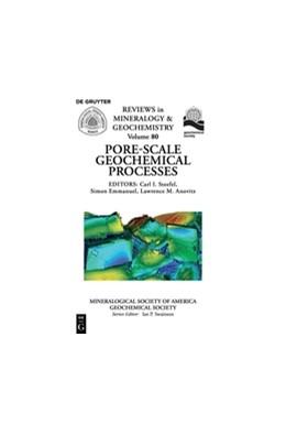 Abbildung von Steefel / Emmanuel / Anovitz   Pore Scale Geochemical Processes   2016   80