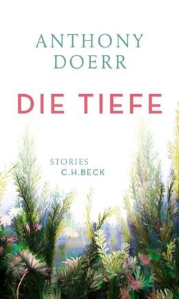 Abbildung von Doerr, Anthony | Die Tiefe | 2017 | Stories