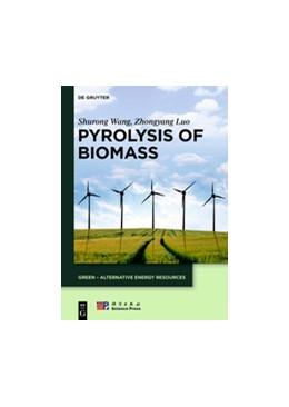 Abbildung von Wang / Luo | Pyrolysis of Biomass | 1. Auflage | 2016 | beck-shop.de