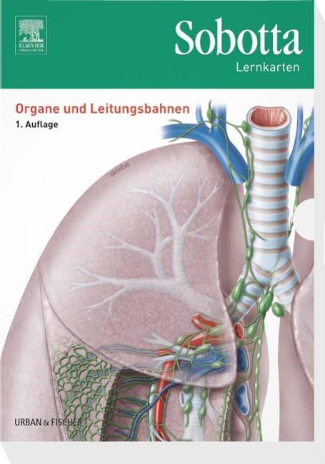 Sobotta Lernkarten Organe und Leitungsbahnen | Bräuer, 2016 (Cover)