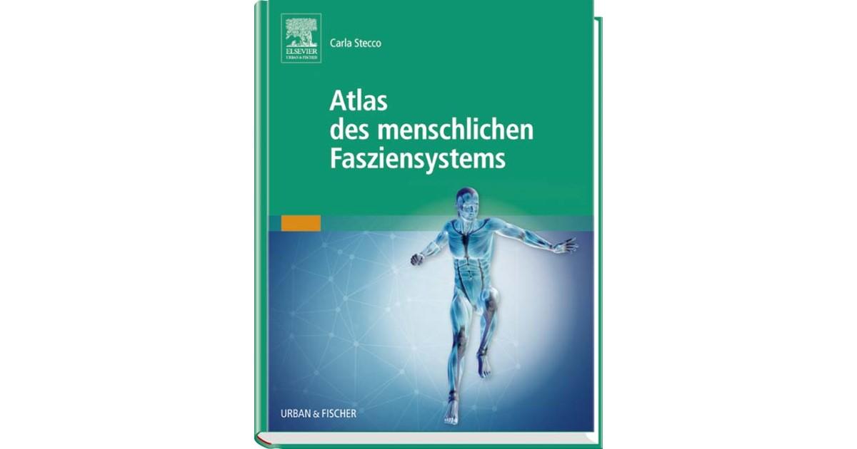 Atlas des menschlichen Fasziensystems | Stecco, 2016 | Buch | beck ...