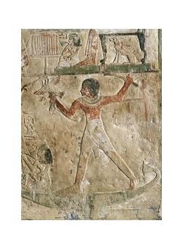 Abbildung von Wiese   Ägyptische Kunstwerke aus der Sammlung Hans und Sonja Humbel   2016