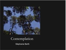 Abbildung von Sandmann | Contemplation | 2016 | 7