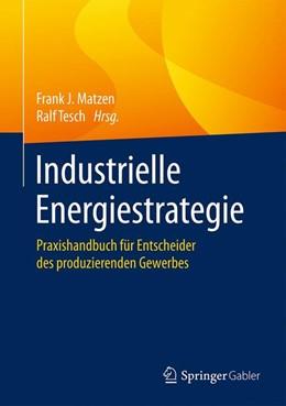 Abbildung von Matzen / Tesch   Industrielle Energiestrategie   2016   Praxishandbuch für Entscheider...