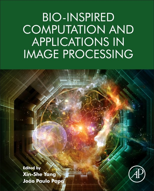 Abbildung von Yang / Papa   Bio-Inspired Computation and Applications in Image Processing   2016