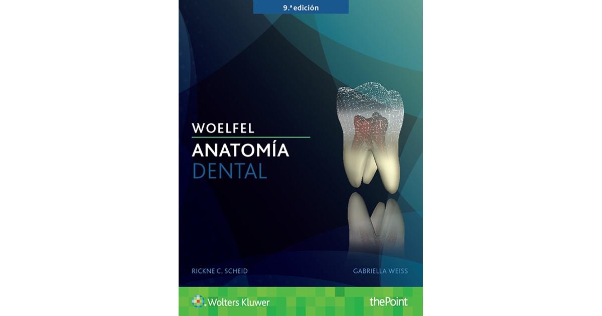 Woelfel. Anatomía dental | Scheid / Weiss, 2017 | Buch | beck-shop.de