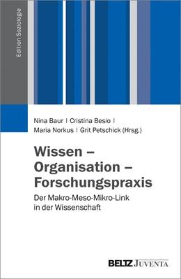 Abbildung von Baur / Besio / Norkus / Petschick   Wissen - Organisation - Forschungspraxis   2016   Der Makro-Meso-Mikro-Link in d...
